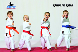 KarateParasiteHome